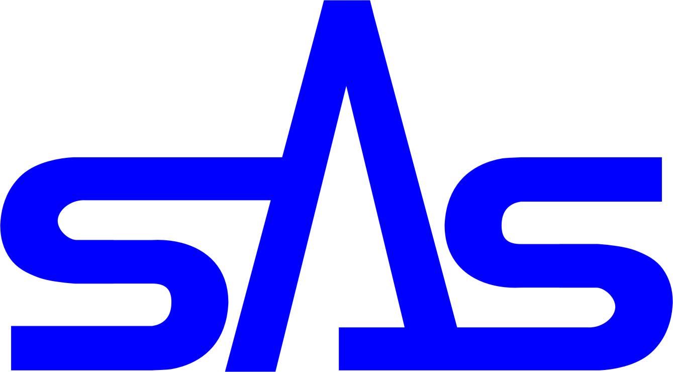 에스에이에스의 계열사 에스에이에스(주)의 로고