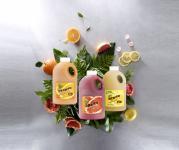 과일농축액